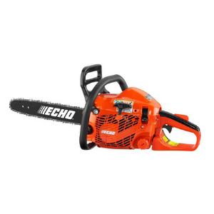 Echo CS 310